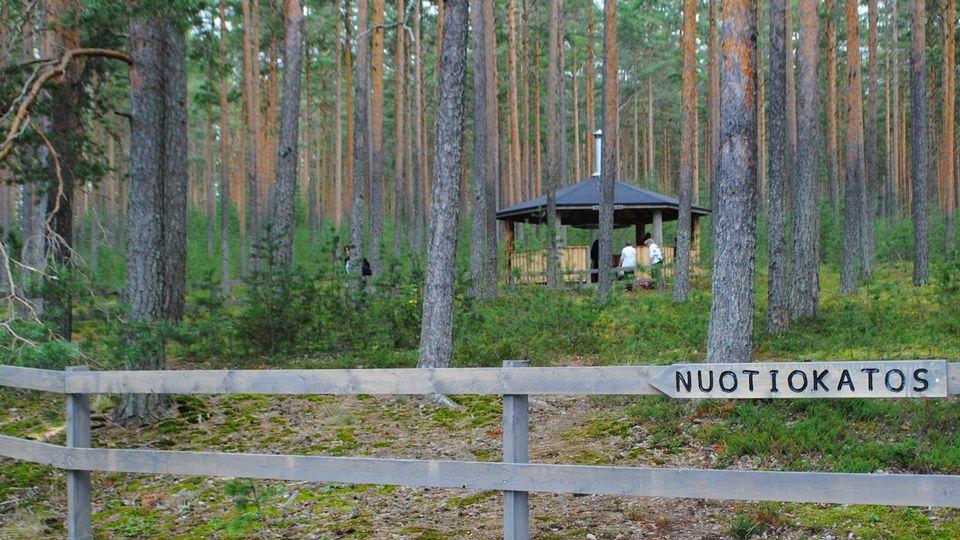 Päijänteen kansallispuisto nuotio